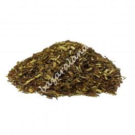 Rooibos Verde Original | Agricultura Biológica