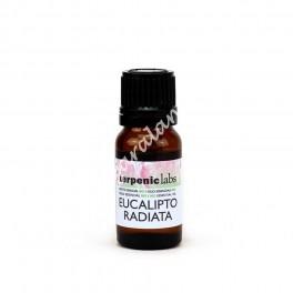 Eucalipto Radiata - Aceite Esencial Bio Terpenic